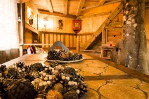 Dolomiti-Village-casa-sull-albero-italia1